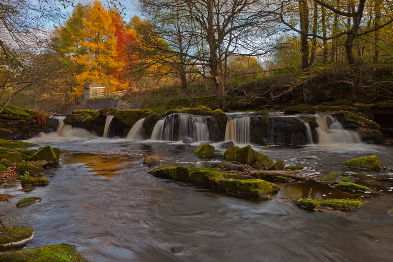 Waterfall And Autumn Colours, River Derwent.